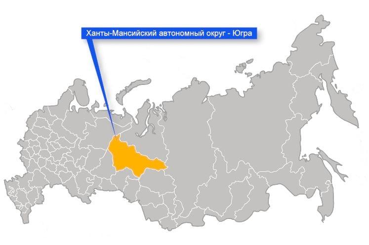 главный государственный инспектор труда российской федерации 200: