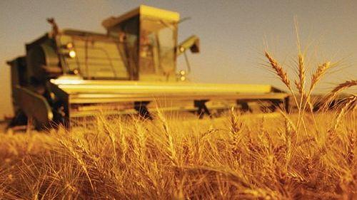 инструкции по охране труда в сельском хозяйстве по профессиям и видам работ - фото 10
